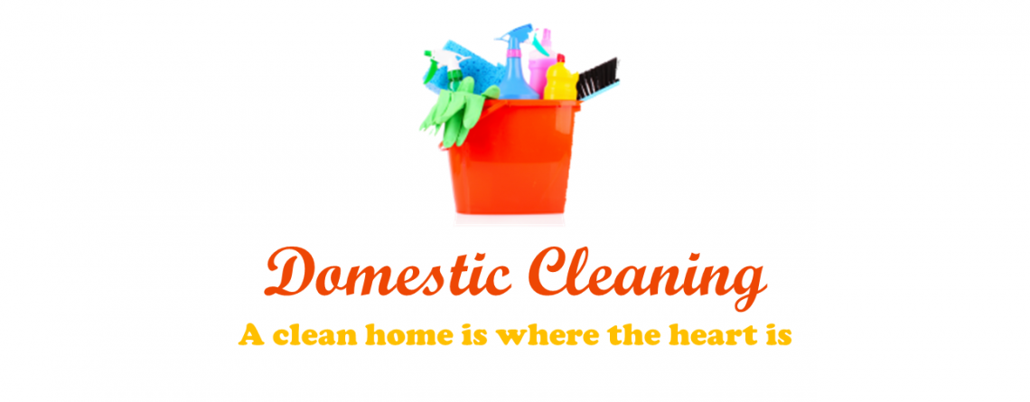 Home & Domestic Cleaning Services